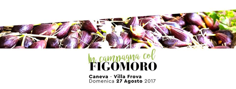 FigoMoro da Caneva