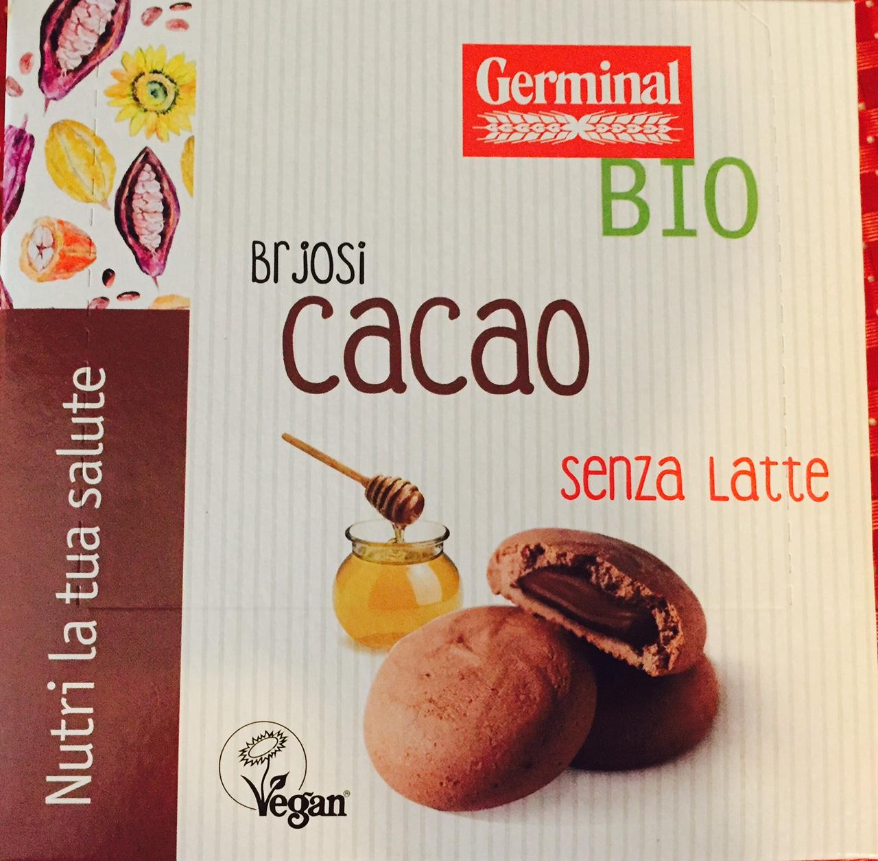 Brjosi al cacao Germinal - lattosio 0% Image