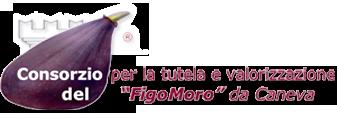 figomoro2