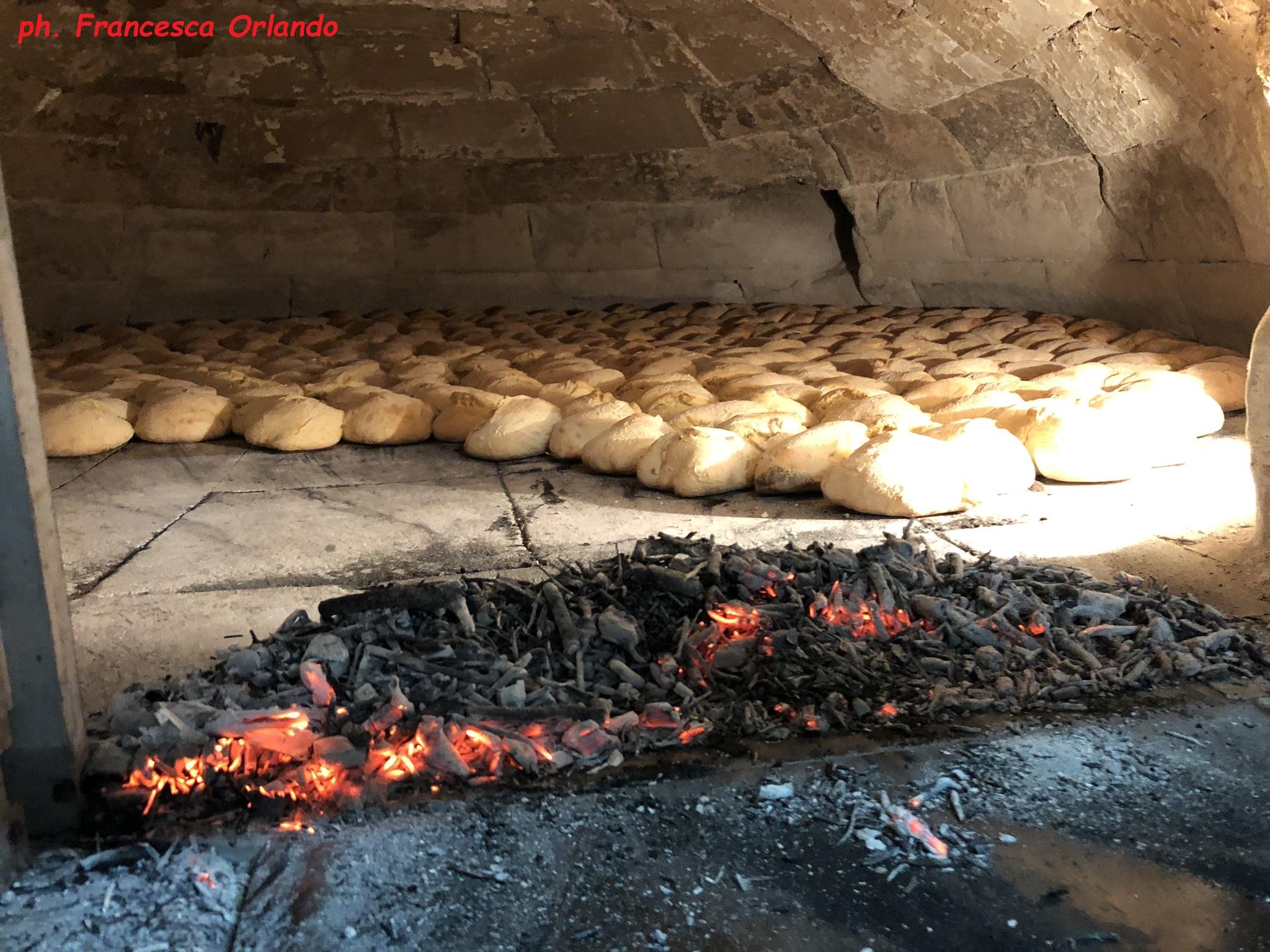 la cottura della puccia in forno a legna
