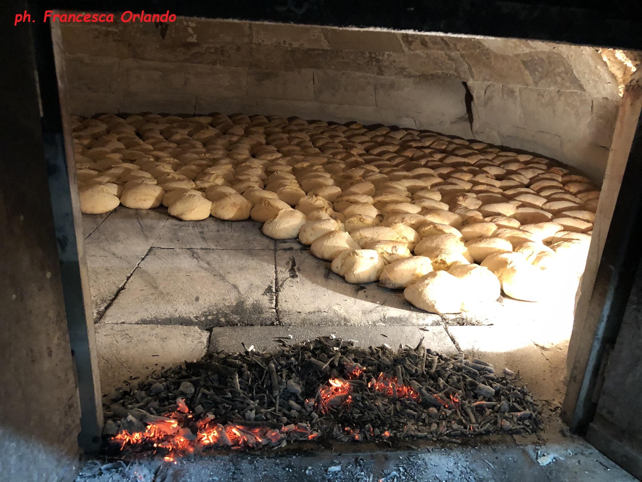 puccia in forno a legna