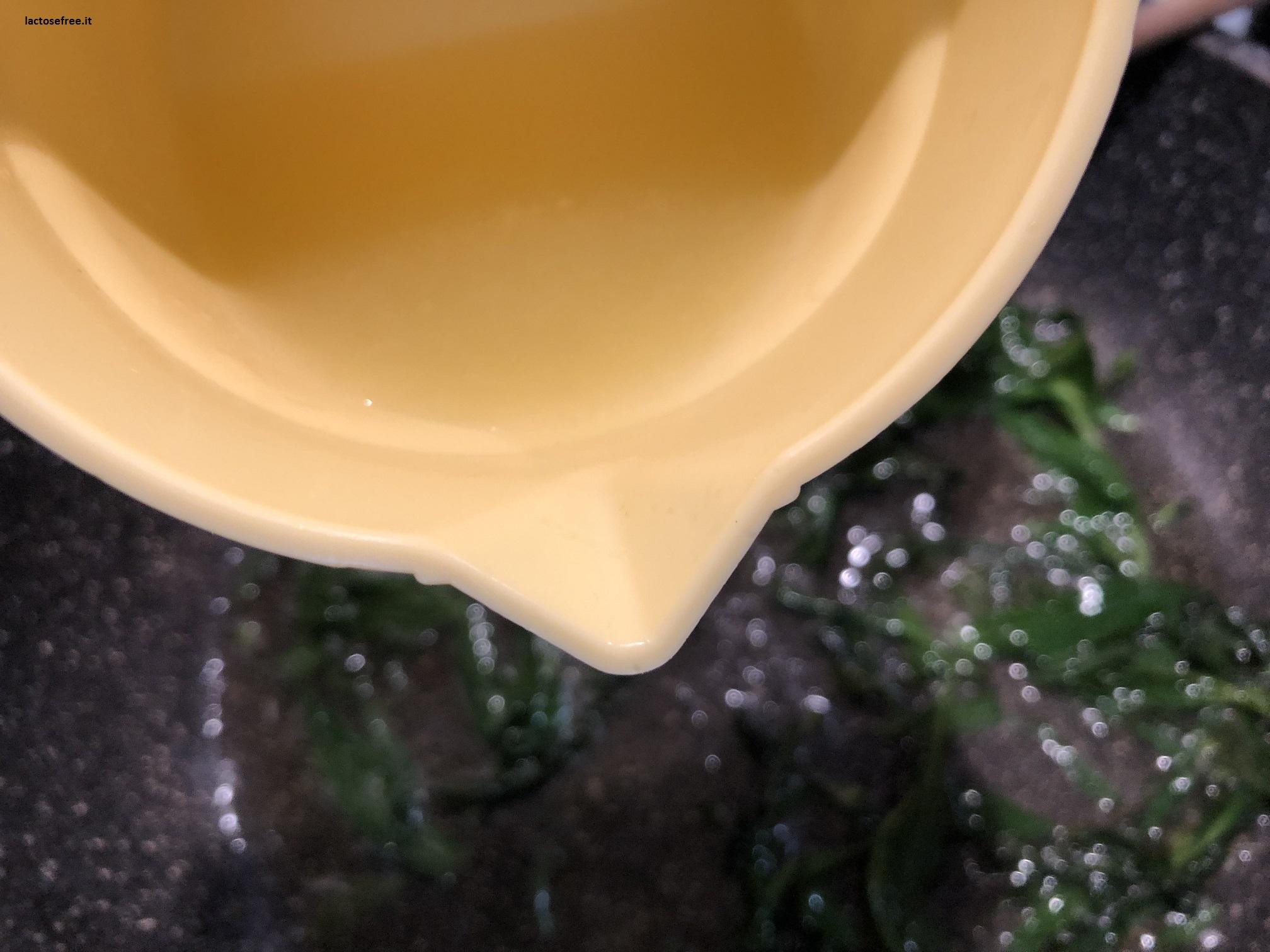 Tagliatelle alle erbe di campo limone e stevia 11
