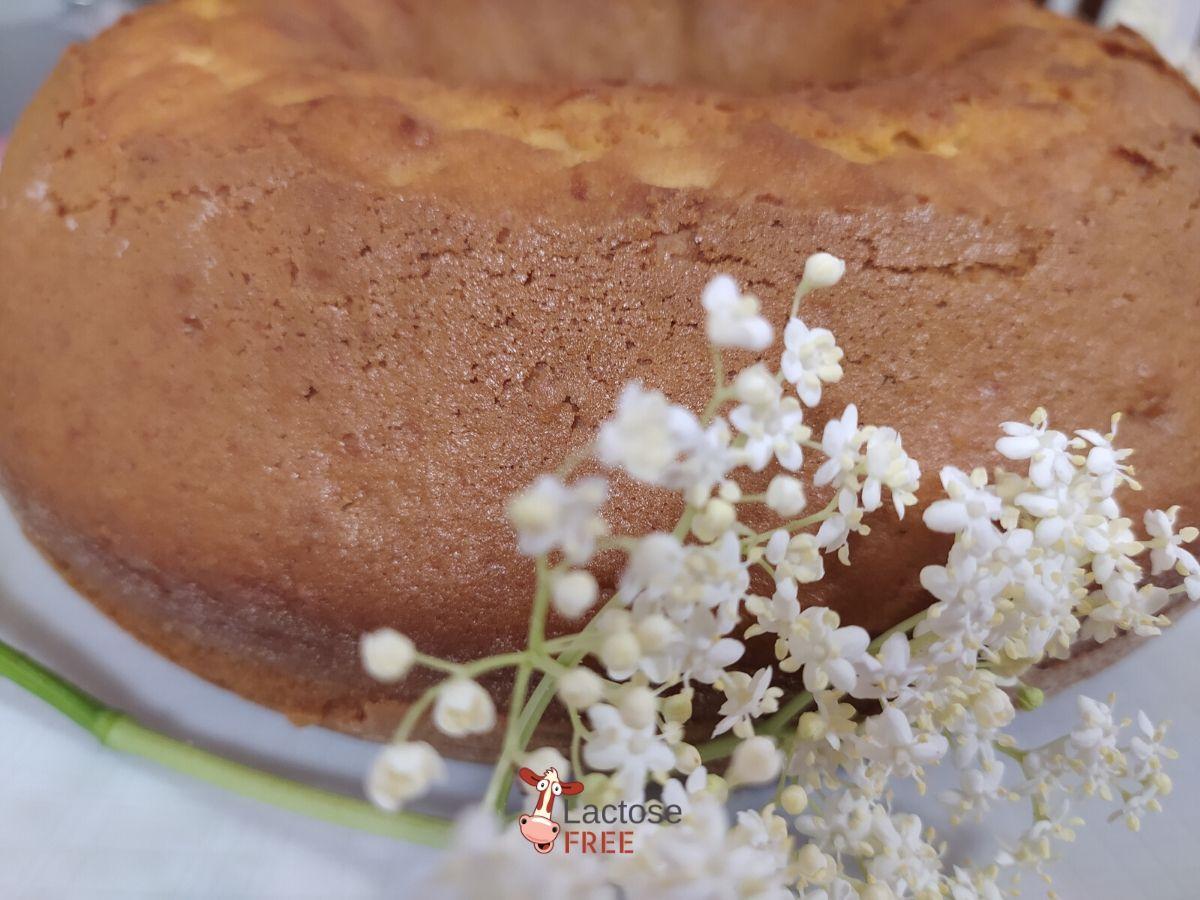 Torta-ai-fiori-di-sambuco