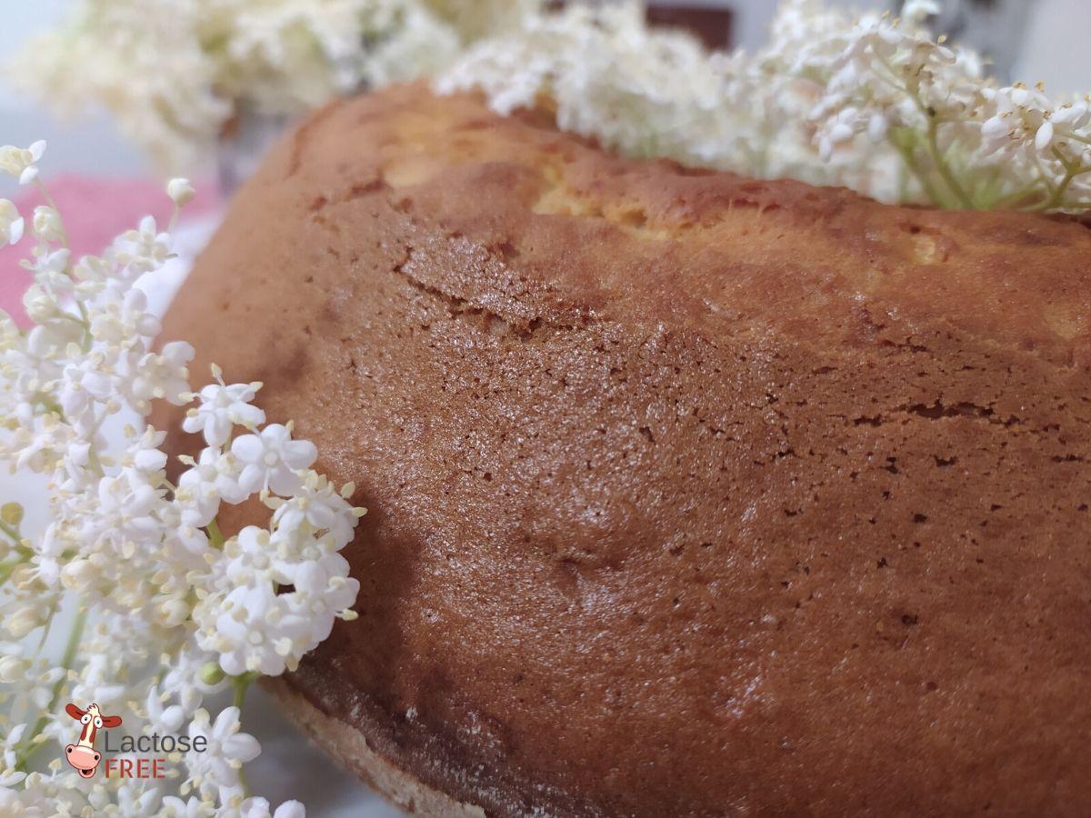 Torta con i fiori di sambuco